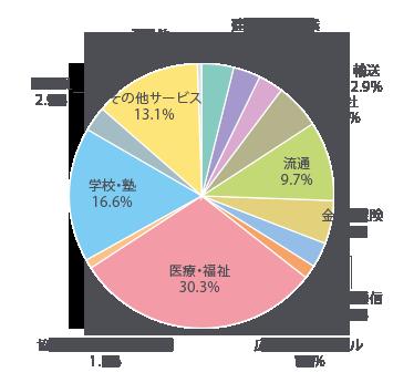 建築・不動産業4.0% 製造業3.4% 輸送2.9% 商社5.7% 流通9.7% 金融・保険5.3% 情報・通信2.9% 広告・旅行・ホテル1.7% 医療・福祉30.3% 協同組合・郵便・非営利1.1% 学校・塾16.6% 公務員2.9% その他サービス13.1% その他0.4%